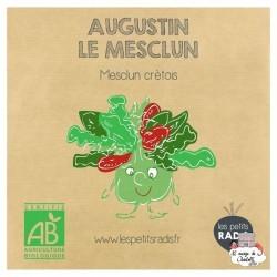 Mini kit de graines BIO d'Augustin le mesclun - LPR-G141 - Les Petits Radis - Nature et découvertes - Le Nuage de Charlotte