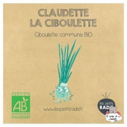 Mini organic seed kit of Claudette the chives - LPR-G061 - Les Petits Radis - Nature and discoveries - Le Nuage de Charlotte