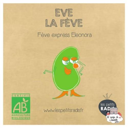 Mini kit de graines BIO d'Eve la fève - LPR-G191 - Les Petits Radis - Nature et découvertes - Le Nuage de Charlotte
