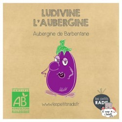 Mini kit de graines BIO de Ludivine l'aubergine - LPR-G211 - Les Petits Radis - Nature et découvertes - Le Nuage de Charlotte