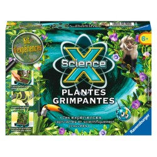 Mini - Plantes grimpantes