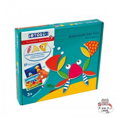 iOTOBO Design Polynesia - IOT-iTB-ANI - SEPP Jeux - Creativity and Magnets - Le Nuage de Charlotte