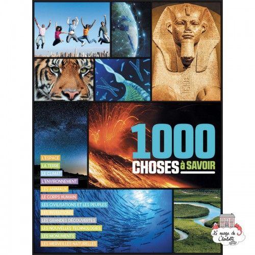 1000 choses à savoir - 123-0048 - Editions 123 Soleil - Documentaries - Le Nuage de Charlotte